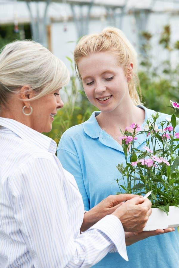提植物建议的职员女性顾客在园艺中心 库存照片