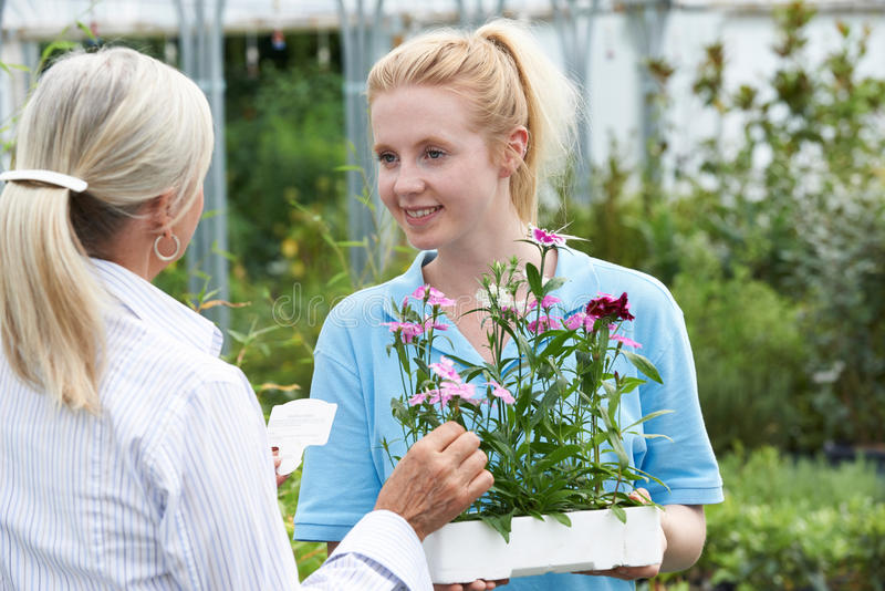 提植物建议的职员女性顾客在园艺中心 免版税库存照片