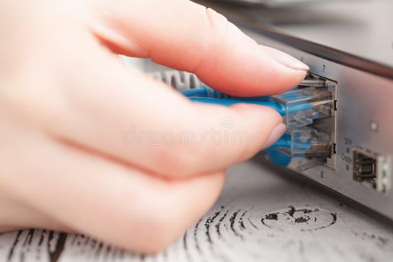 插入网络插接线在lan换向器开关 库存照片