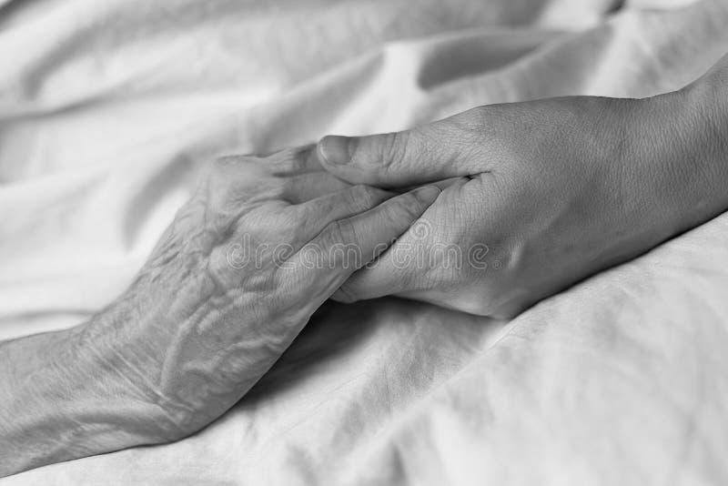 握一个老妇人的手的年轻女人在医院病床上,黑&白色 免版税库存照片