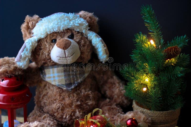 握在一个红色灯笼的逗人喜爱的玩具熊一个爪子在黑背景 在框架,您能看到一棵小圣诞树与 免版税库存图片