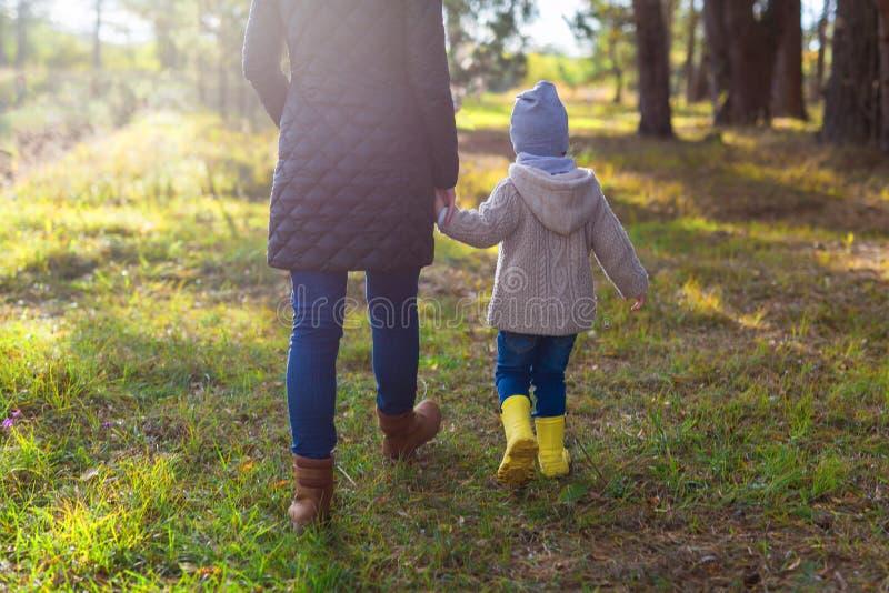 握她的孩子的手的年轻母亲,当走在森林里时 免版税图库摄影