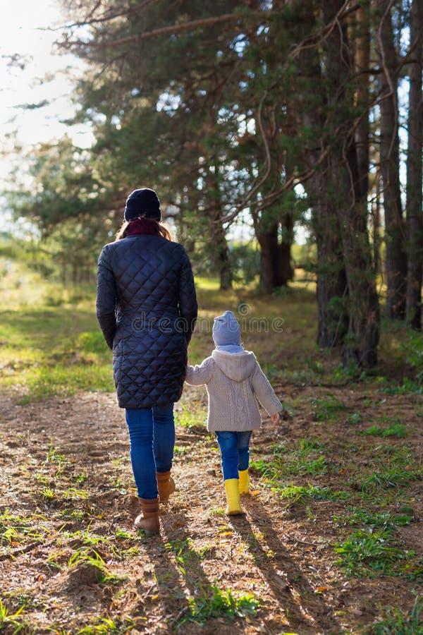握她的孩子的手的母亲,当一起走在森林里时 库存图片