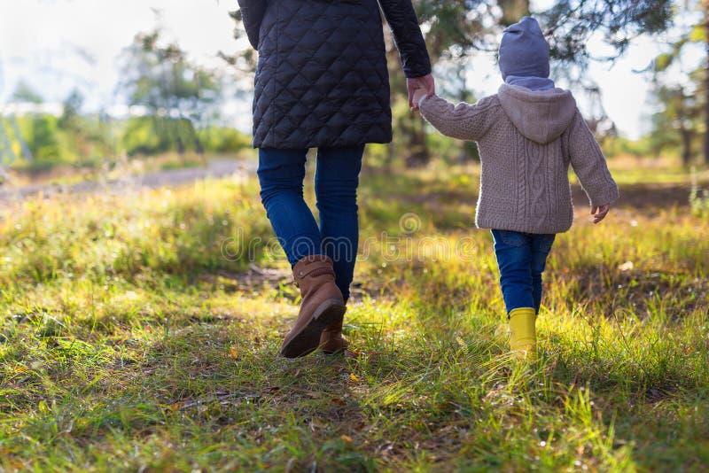 握她的孩子的手的母亲,当有步行在森林时 免版税图库摄影