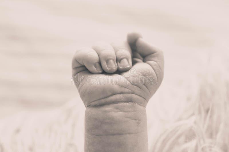 握她的新生儿手的女性手 有她的孩子的妈妈 母道,家庭,诞生概念 库存图片