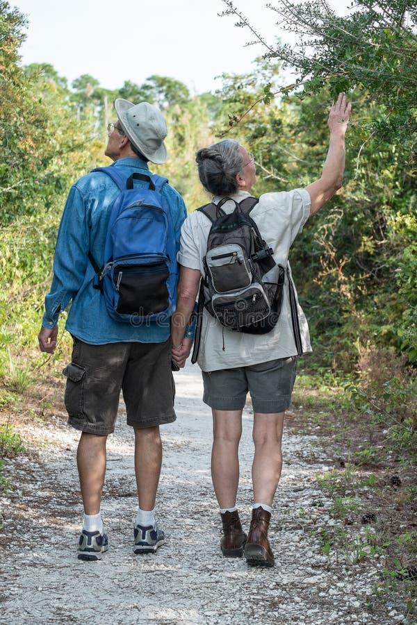 握手和远足在自然t的成熟夫妇 免版税图库摄影