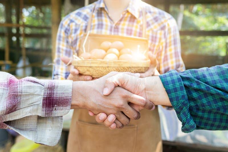 握手在蛋养鸡场,商务伙伴握手,农夫的协议的人们 农业农艺师食物事务 库存照片
