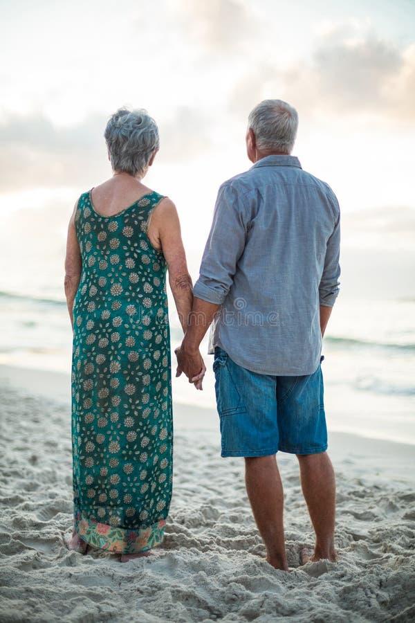 握手的一对资深夫妇的背面图 免版税图库摄影