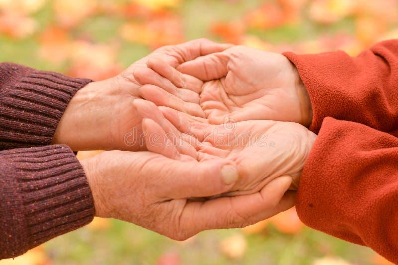 握手的两个人在自然 库存照片