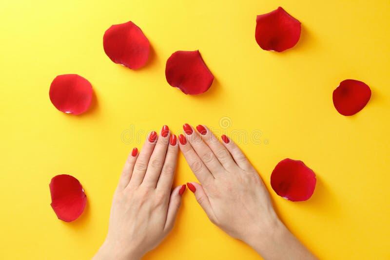 握手的妇女在颜色背景的玫瑰花瓣附近 美好的指甲油 库存照片