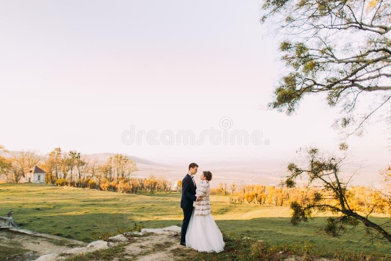 握手的新婚佳偶的水平的全长照片在他春天森林和山的背景 库存图片