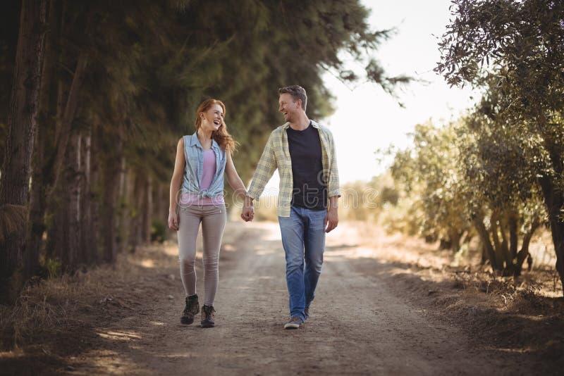 握手的年轻夫妇,当走在土路在橄榄色的农场时 图库摄影