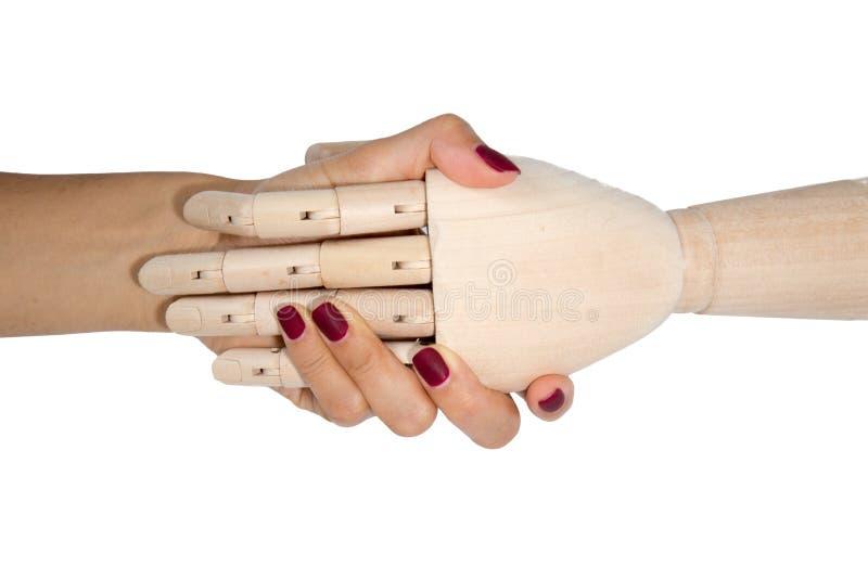 握木手的妇女的手 免版税库存照片