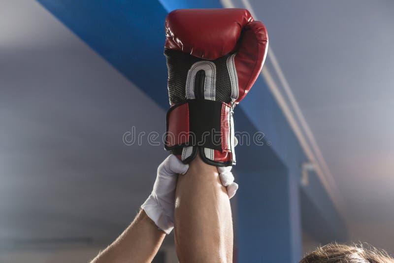 握赢取的男性拳击手的手的裁判员 免版税库存图片
