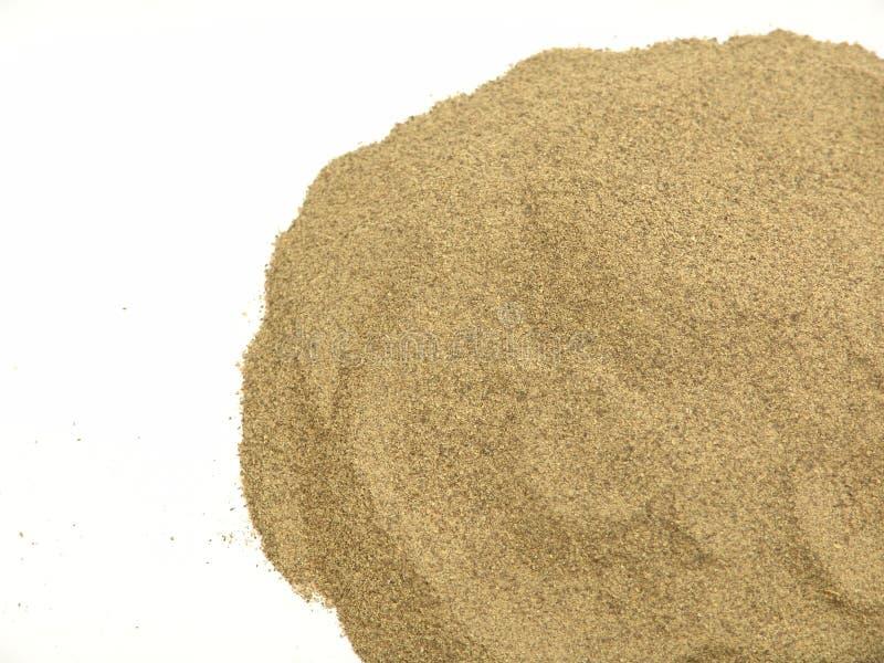 搽粉的黑胡椒,隔绝在白色背景 免版税图库摄影