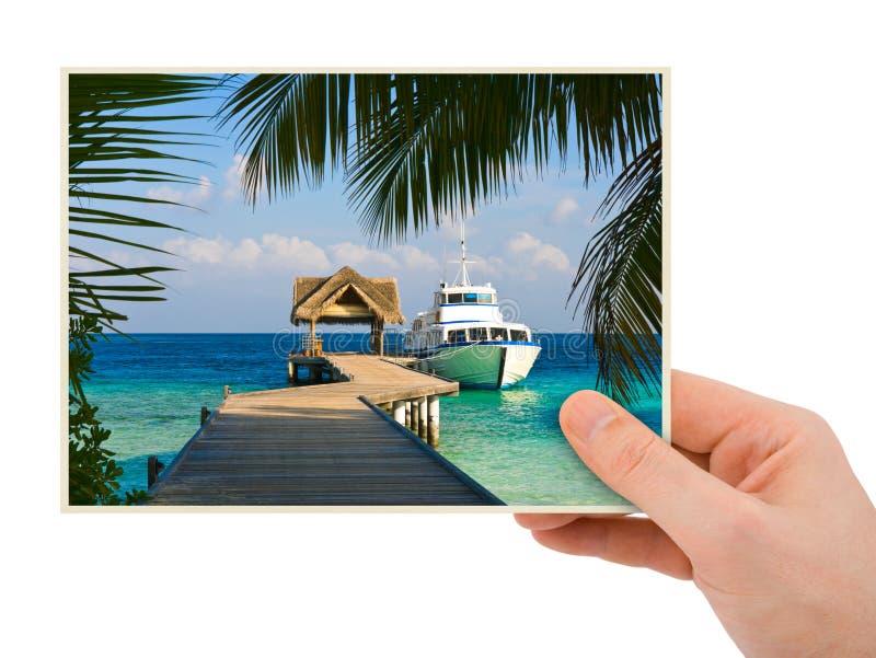 摄影在手中 免版税图库摄影