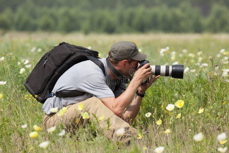 摄影师拍在绿色草甸的一张照片 免版税库存照片