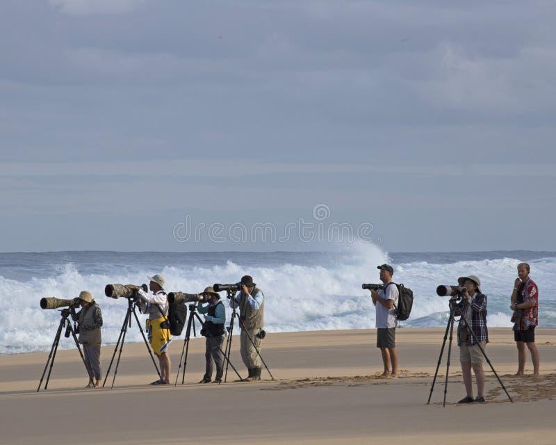 摄影师海浪 免版税图库摄影
