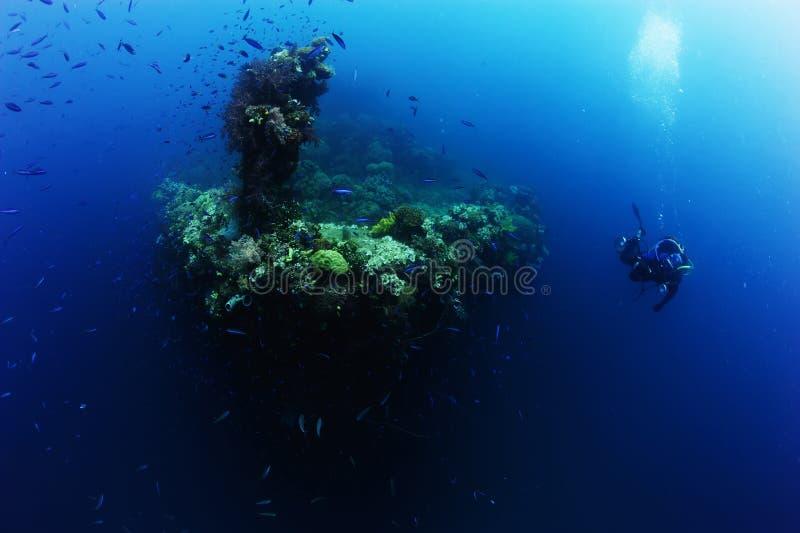 摄影师潜水者水肺采取照片或录影近的礁石海洋 免版税库存照片