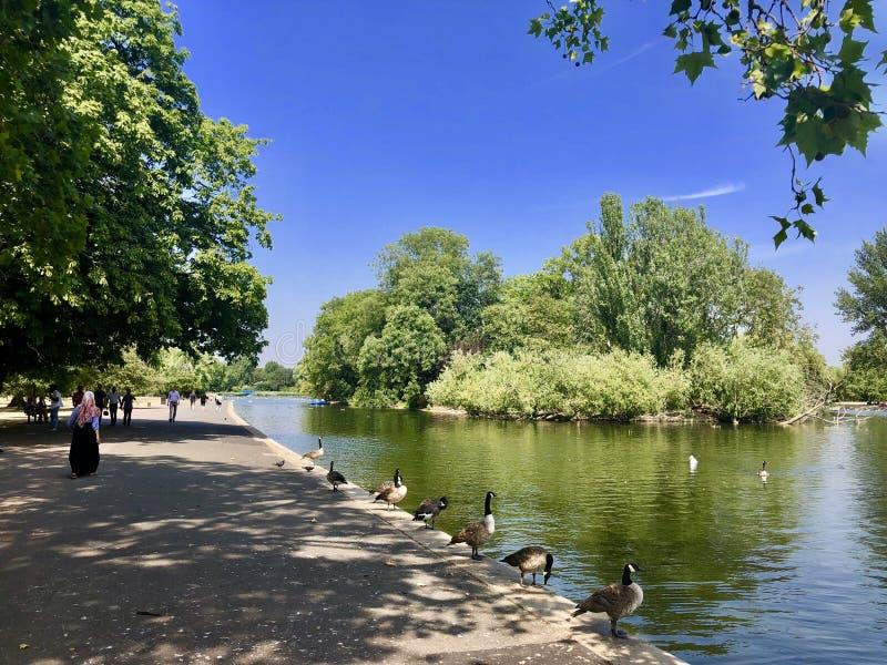 摄政的` s公园,伦敦,英国 免版税库存图片