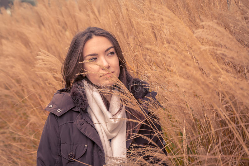 摆在一个干草领域的年轻美丽的女孩 库存图片