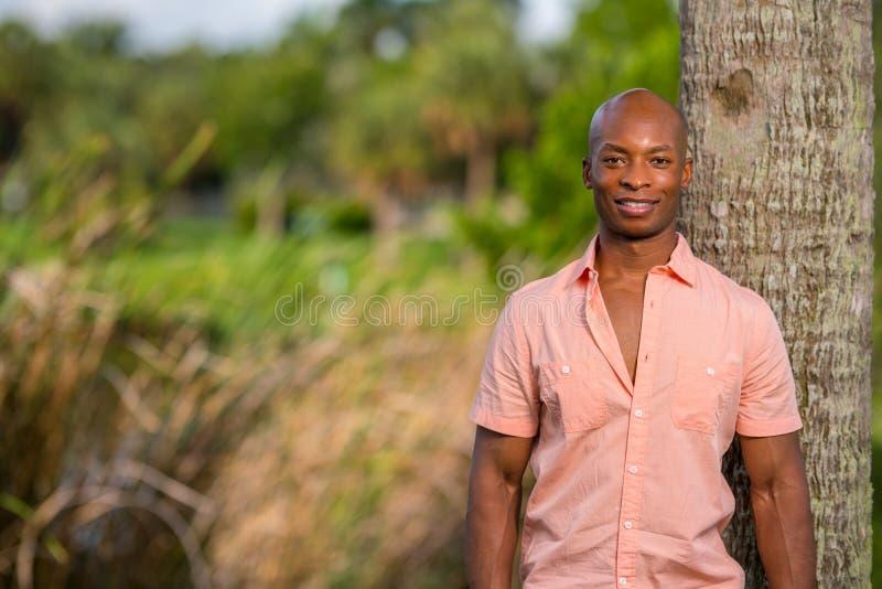 摆在一件桃红色按钮衬衣的英俊的非裔美国人的男性模型 男性式样显示的胸口 库存图片