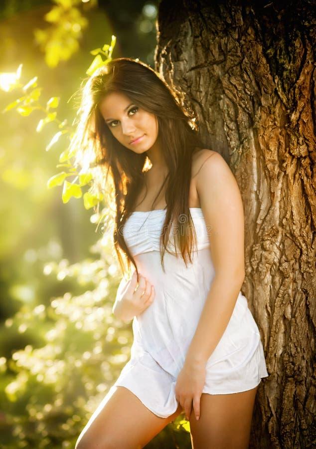摆在一棵树附近的白色短的礼服的可爱的少妇在一个晴朗的夏日 美好的享用的女孩本质 免版税库存图片