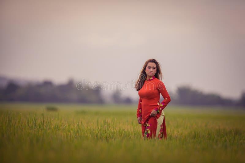 摆在一件红色礼服的越南年轻美丽的浅黑肤色的男人 库存图片