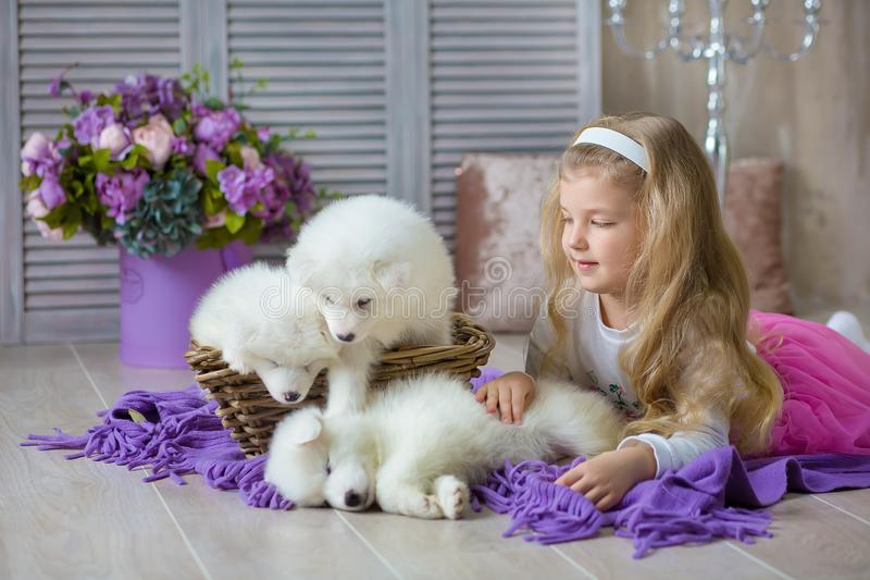 摆在与在减速火箭的演播室射击的多壳的小狗白色的白肤金发的女孩 与小狗的逗人喜爱的小孩子戏剧在被设计的家 免版税库存照片