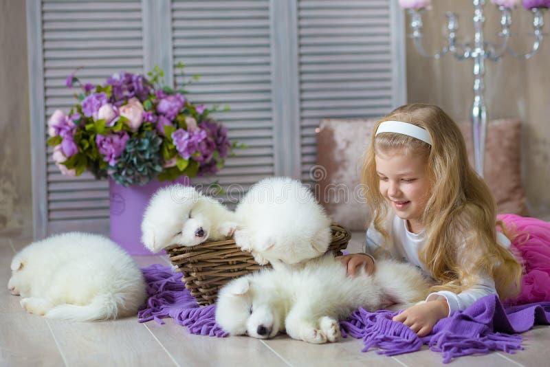 摆在与在减速火箭的演播室射击的多壳的小狗白色的白肤金发的女孩 与小狗的逗人喜爱的小孩子戏剧在被设计的家 库存图片