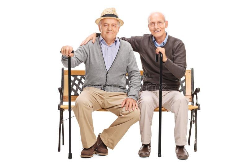 摆在两个成熟的朋友一起安装在长凳 库存照片
