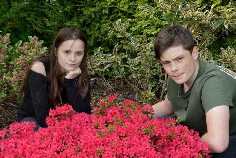 摆在为照片的兄弟姐妹在庭院里 库存图片
