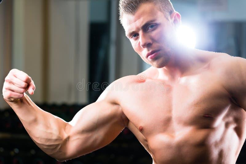 摆在健身房的爱好健美者 图库摄影