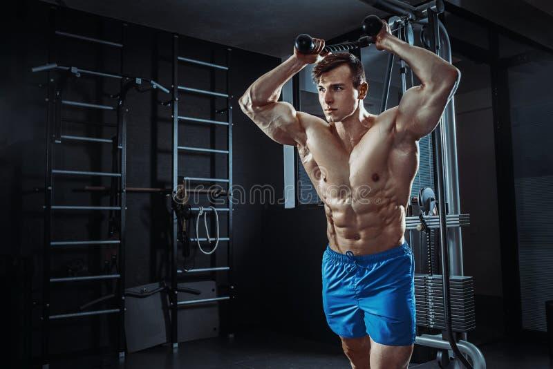 摆在健身房,形状胃肠的性感的肌肉人 强的男性赤裸躯干吸收,解决 图库摄影
