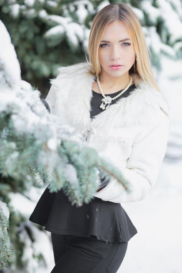 摆在冬天的魅力年轻金发碧眼的女人 库存图片