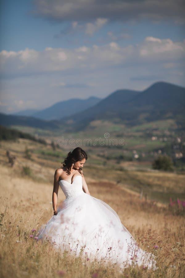 摆在山背景的晴朗的夏日的庄重装束的华美的新娘  免版税库存图片