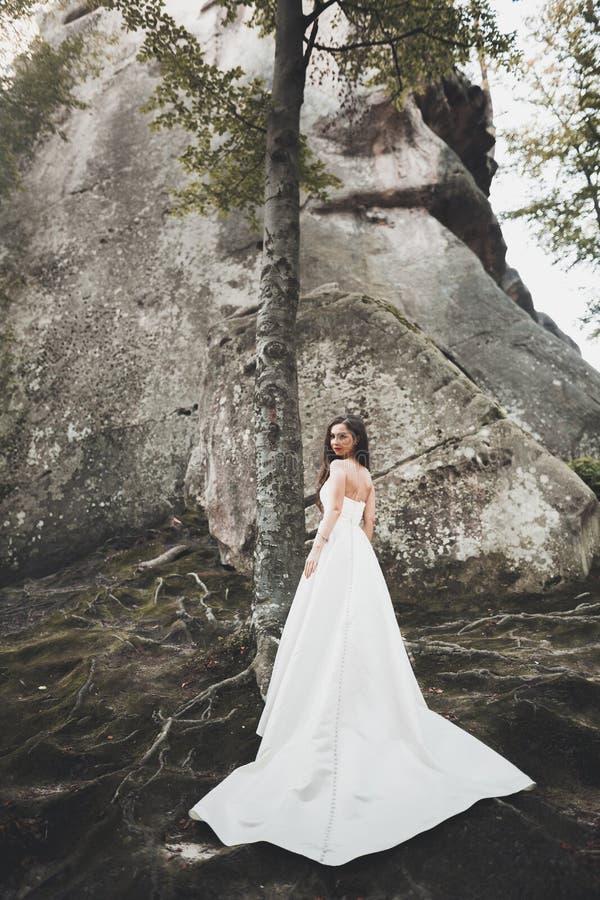 摆在岩石附近反对背景山的美丽的新娘 免版税库存图片