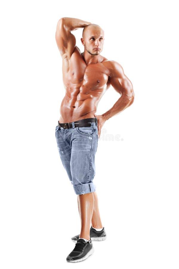 摆在工作室的肌肉的男性设计 免版税库存图片
