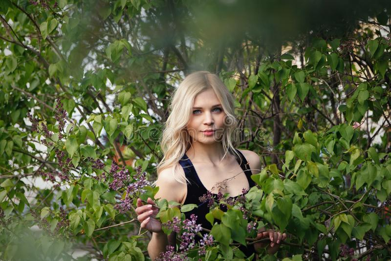摆在开花的丁香的布什的旁边性感的淘气蓝眼睛的浅色皮肤的年轻金发碧眼的女人 r 免版税库存图片