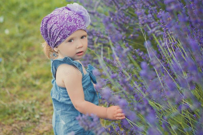 摆在接近lavander灌木佩带的牛仔裤的中央公园草甸的年轻秀丽儿童女孩穿戴和与我的紫罗兰色紫色班丹纳花绸 库存照片