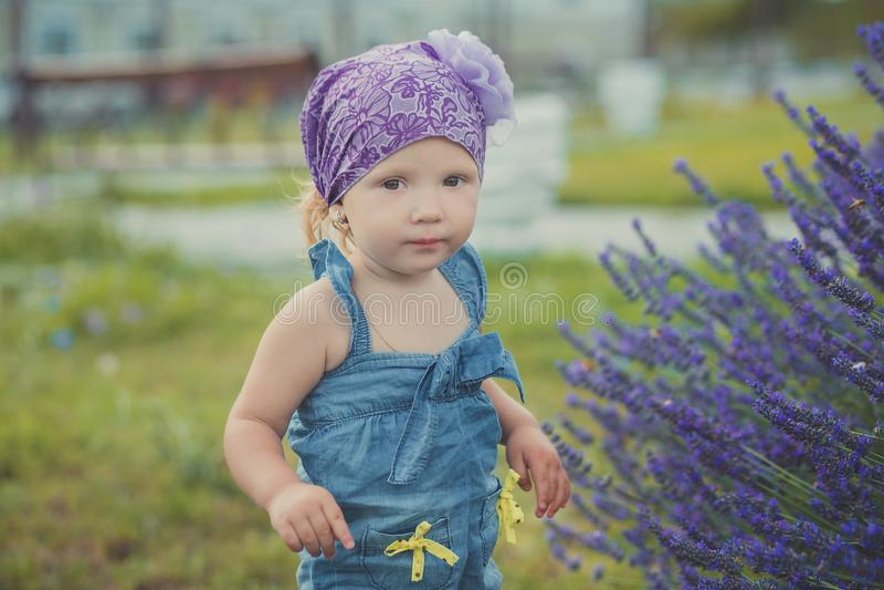 摆在接近lavander灌木佩带的牛仔裤的中央公园草甸的年轻秀丽儿童女孩穿戴和与我的紫罗兰色紫色班丹纳花绸 免版税库存图片