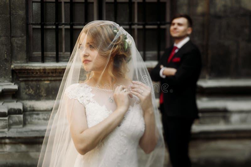 摆在欧洲stree的老庭院里的典雅的婚礼夫妇 库存图片