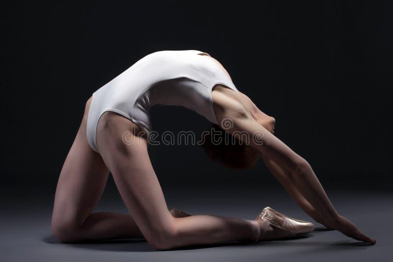 摆在演播室的优美的芭蕾舞女演员画象 免版税库存照片