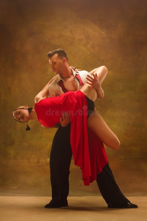 摆在演播室的灵活的年轻现代舞夫妇 库存图片