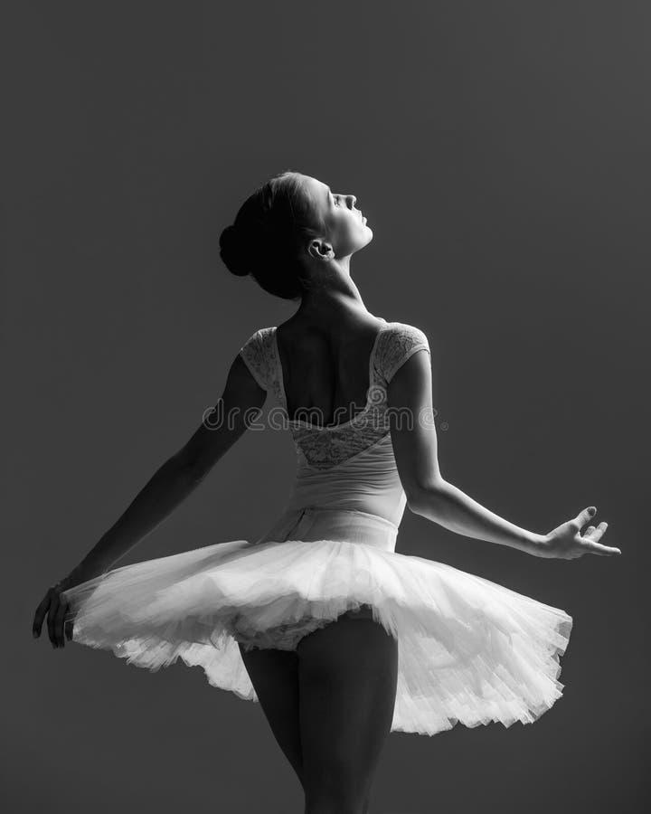 摆在演播室的年轻美丽的芭蕾舞女演员 库存照片