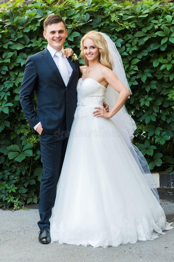 摆在灌木背景的新娘和新郎  免版税库存照片