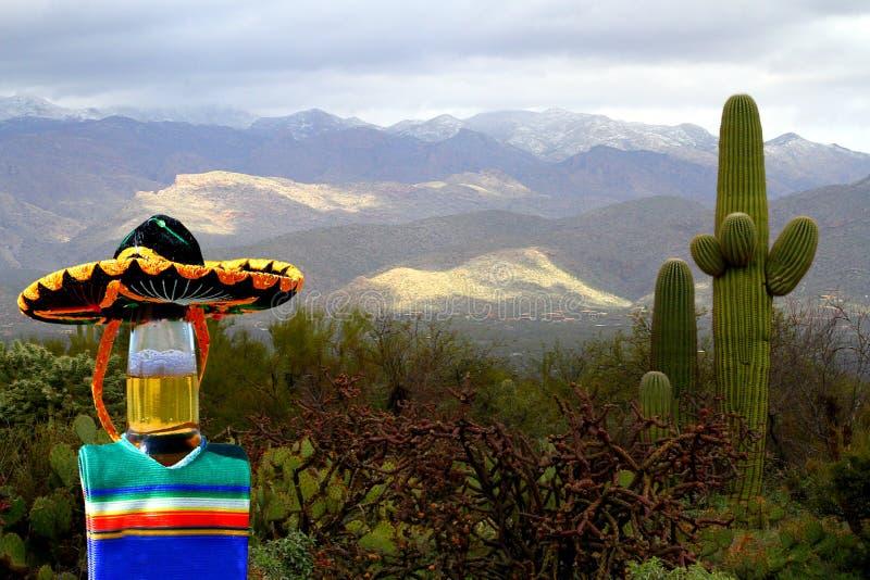 摆在用仙人掌的Cinco de马约角啤酒瓶在沙漠 免版税库存照片