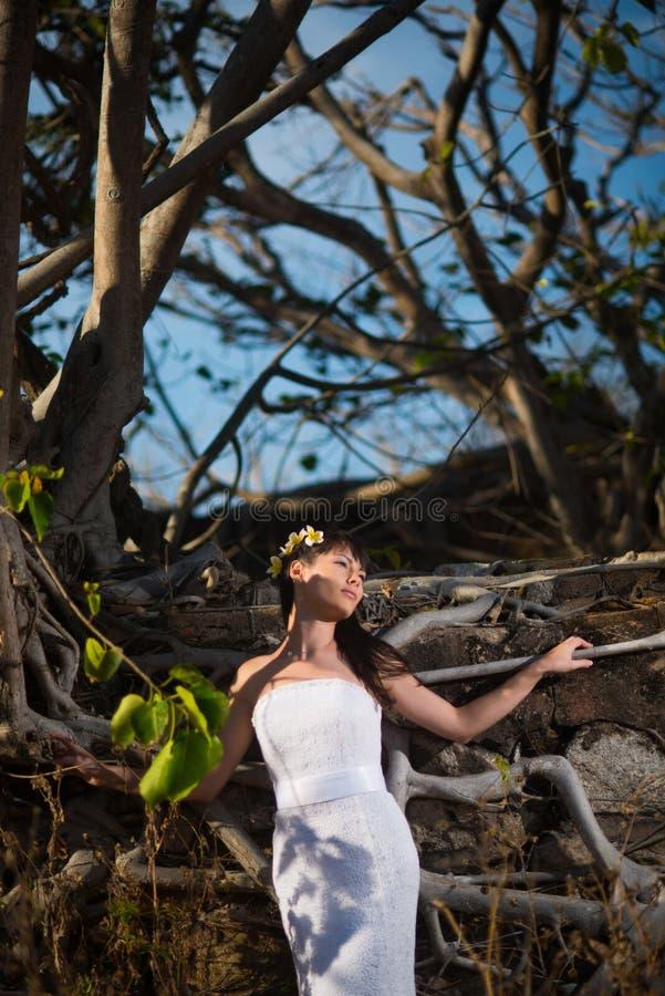 摆在石墙背景的热带树中间的性感的新娘在夏天 库存图片