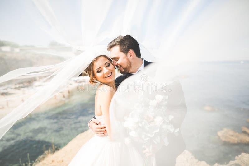 摆在美丽的海滩的结婚的年轻婚礼夫妇愉快和浪漫场面  库存图片