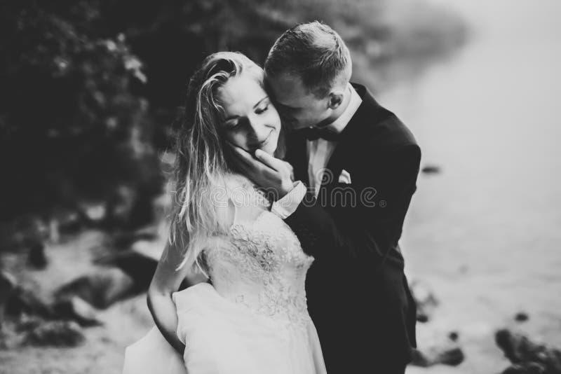 摆在美丽的海滩的结婚的年轻婚礼夫妇愉快和浪漫场面  图库摄影